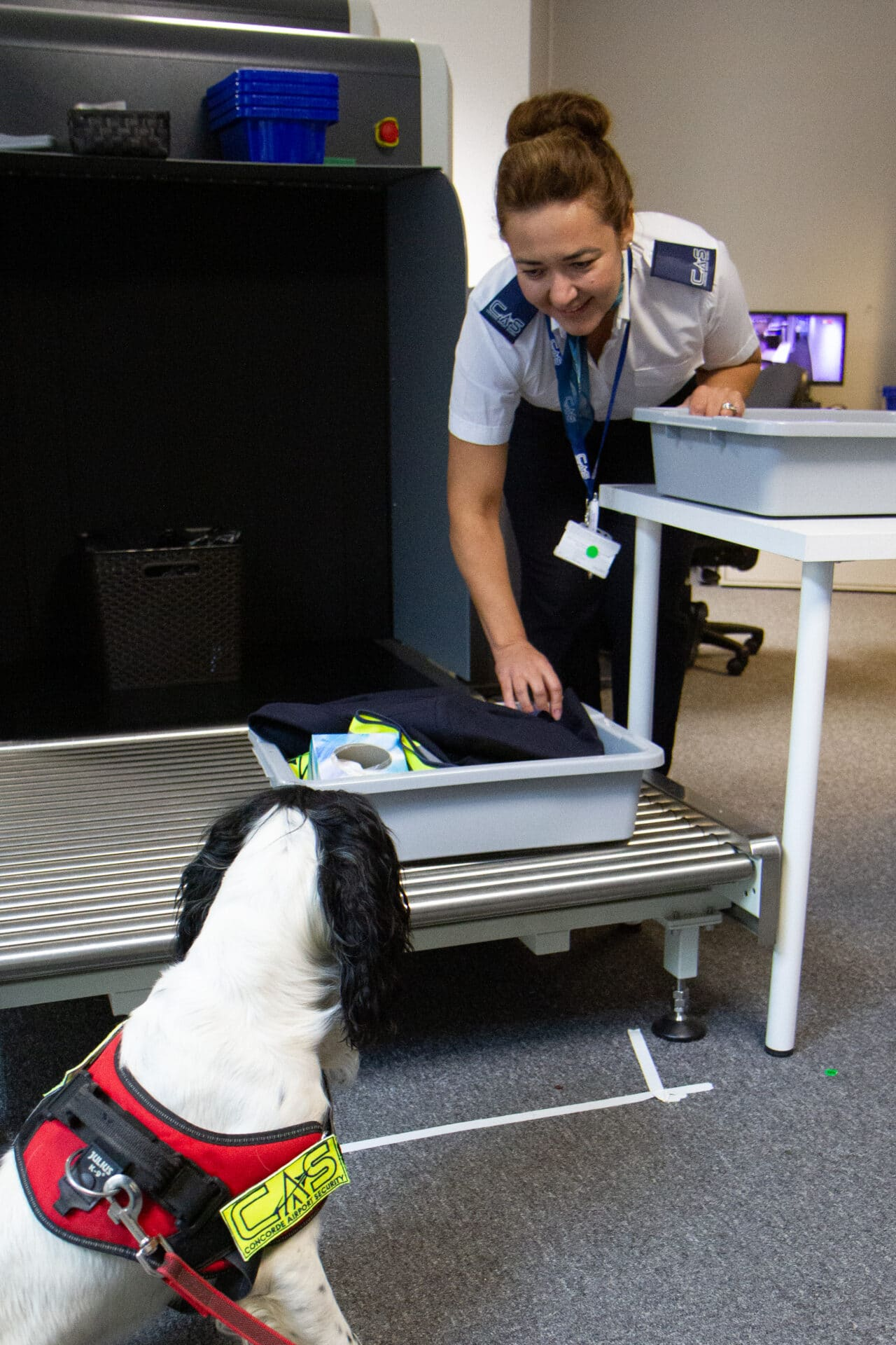 Security Dog - Concorde Airport Security